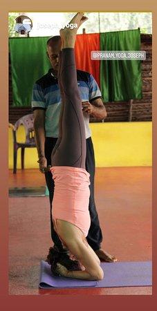 Yoga Teacher Training Course In Kerala With Pranam Yoga Joseph Affiliated By Yoga Alliance International Picture Of Pranam Yoga Joseph Varkala Town Tripadvisor