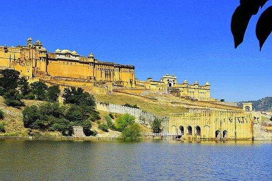 Rajasthan Bhumi Tours
