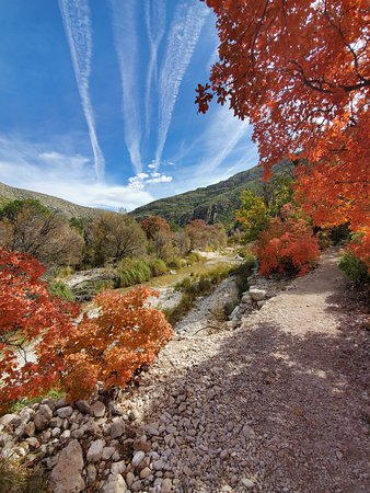 McKittrick Canyon (Guadalupe Mountains National Park ...