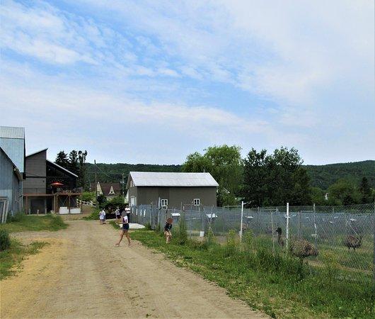 Centre De L'Emeu De Charlevoix