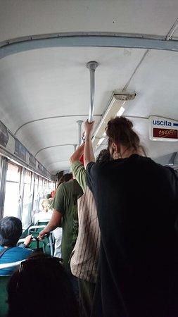 Tram Turistico: 電車內環境