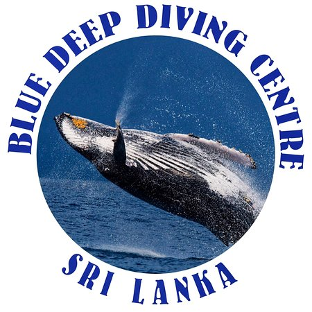‪Blue Deep Diving Centre‬