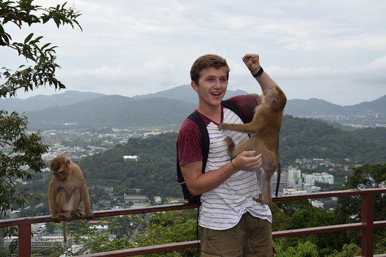 Monkey Hill, Пхукет: лучшие советы перед посещением - Tripadvisor