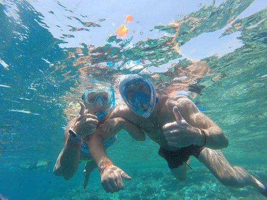 Snorkeling - Picture of Hurghada, Red Sea and Sinai - Tripadvisor