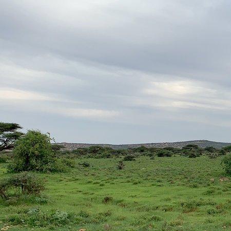 Сомалиленд, Сомали: Amazing landscape of Ainaba