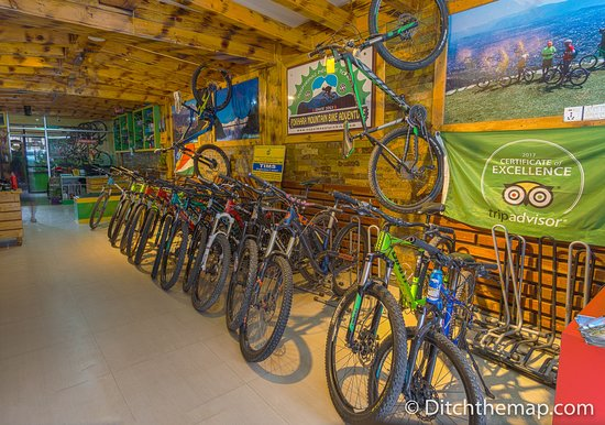 Bike Selection in the company store