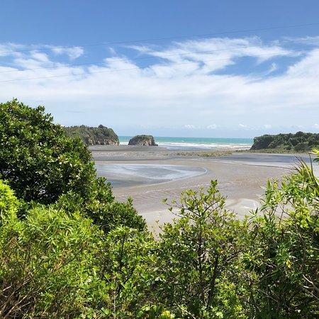 Hamilton & Waikato Region, Новая Зеландия: North island about west to east