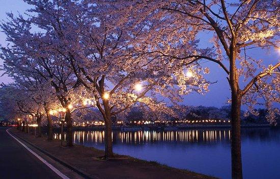 北秋田市照片
