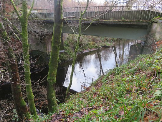 Tillicoultry, UK: Vicars Bridge 
