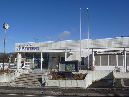 Teshikagacho Library