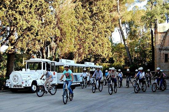 Barcellona: tour e-bike del vino a