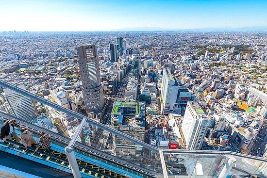 Tour de un día por lo más destacado de Tokio, incluidas las entradas de Shibuya Sky: One Day Highlights Tour of Tokyo including Shibuya Sky Tickets