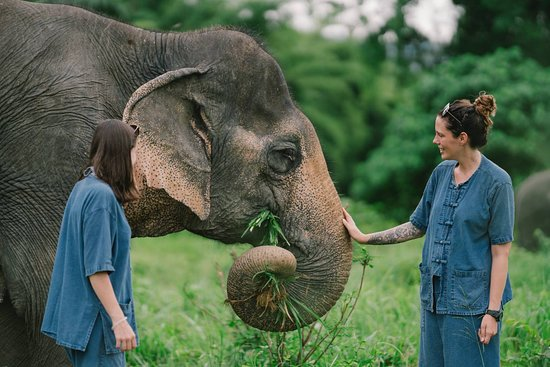 Lanta Elephant Sanctuary