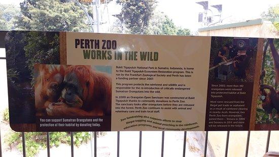 Perth sito di incontri gratuito