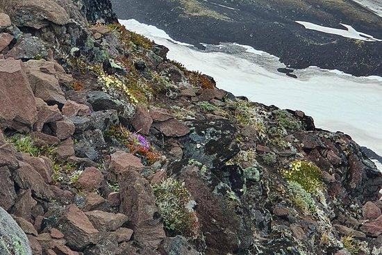 Inländische Vulkane Kamtschatkas an...