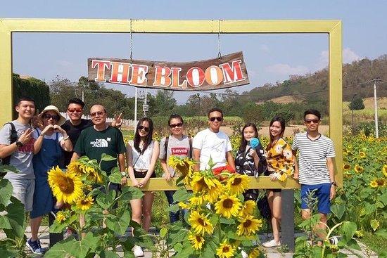 Khao Yai One Day tour 4-5 personen