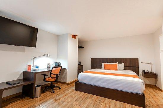 Habitacion Junior suite con capacidad para 3 personas con sofa cama
