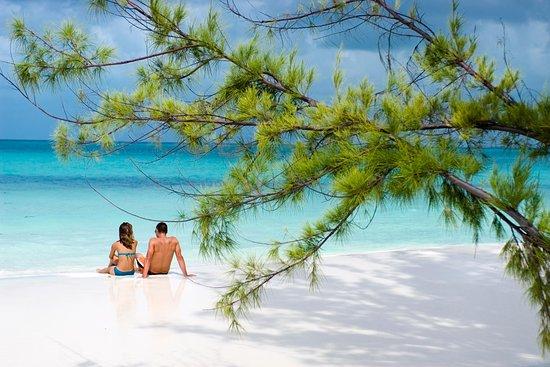 Enjoy Cuba