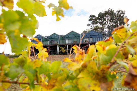 Bridgetown, أستراليا: The Studios high on the hill