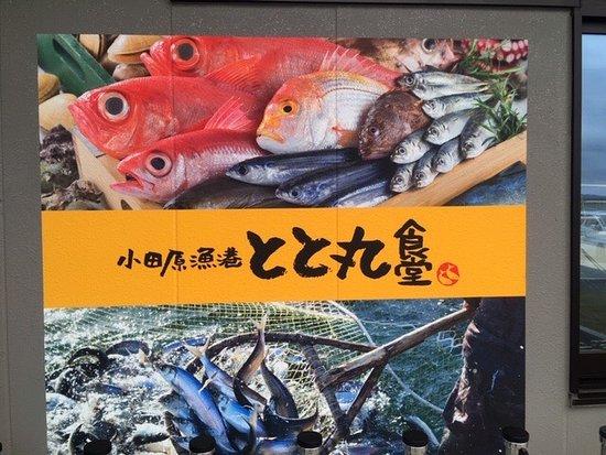 Manadzuru Umi no Eki