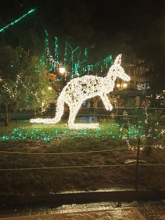 Christmas lights in the park in Salerno