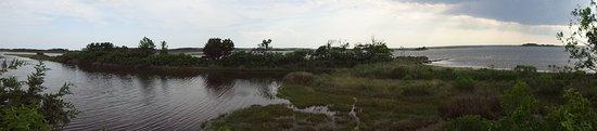 Assateague Island, MD : Panarama of the marsh