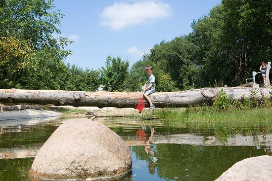Lemele, Nederland: Kleine speelvijver (30 cm diep)