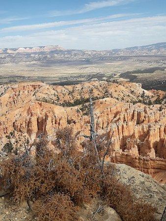 Parque Nacional Bryce Canyon, UT: Bryce Canyon National Park 30