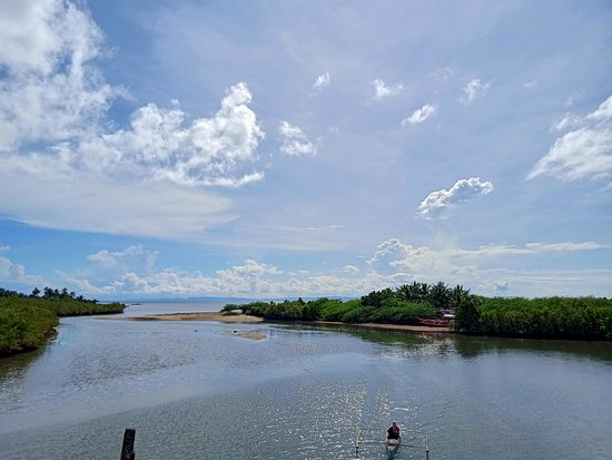 Magallanes, Philippines: While walking along doing some field work, i've seen this amazing view.