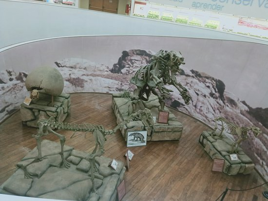Córdoba, Argentina: нулевой этаж с динозаврами