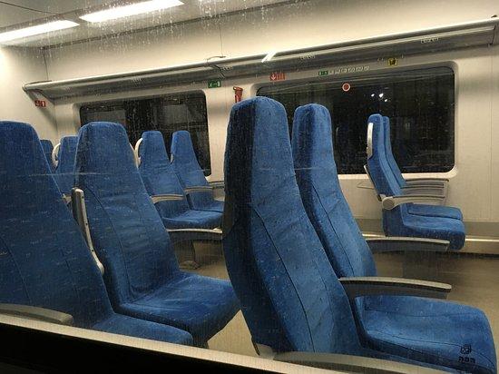 High-speed Train Swallow