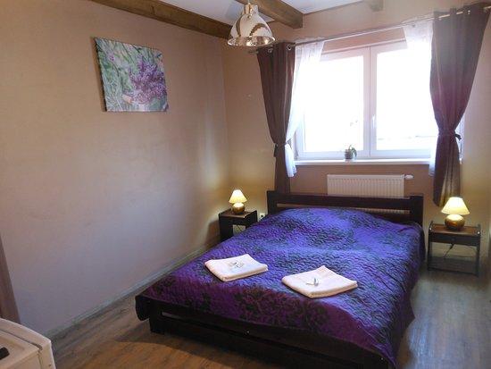 Starovicky, República Checa: Dvoulůžkový pokoj s vlastní koupelnou a TV. WI-FI zdarma. Dále k dispozici lednice a rychlovarná konvice, sdílená kuchyně a posezení na zahradě či terase.