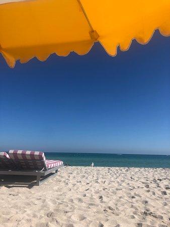 Extraordinary Beach Experience - Thanks to Steven!