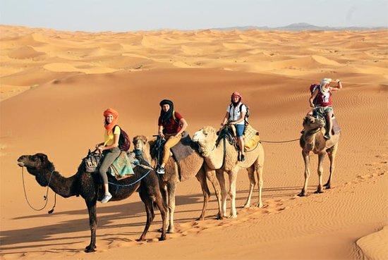 Morocco Amazing Tours