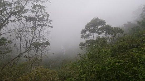 Chirripo National Park Photo