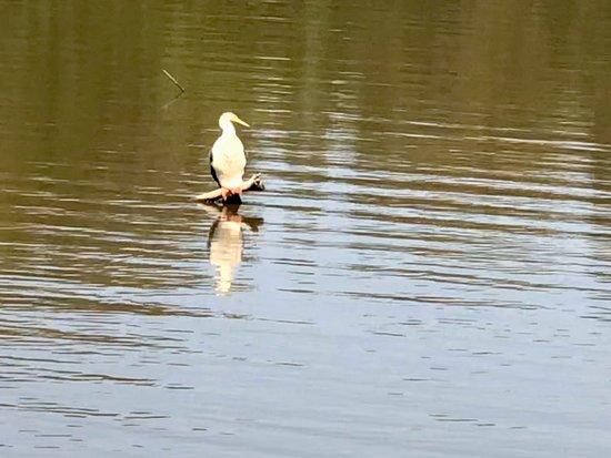 Tygum Lagoon and Park