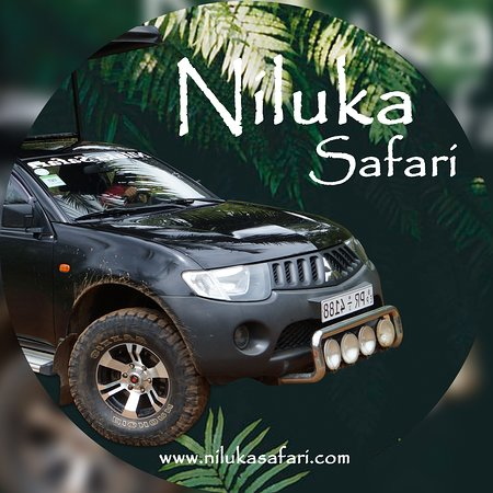 Niluka Safari