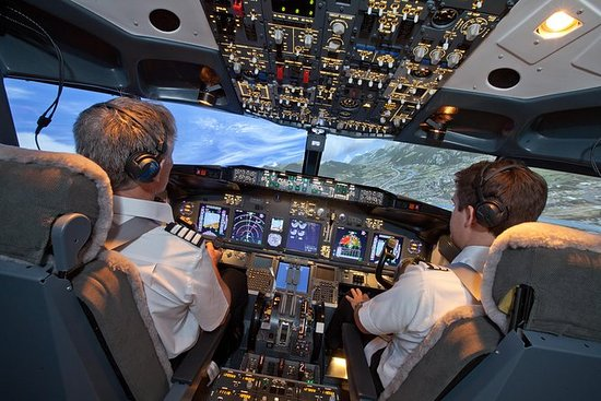 Image result for Flight Simulator