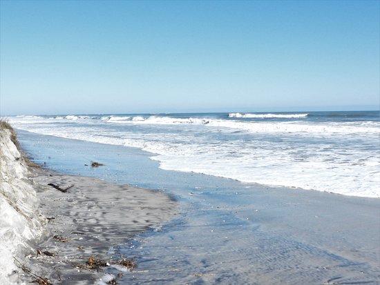 Little Talbot Island State Park Jacksonville 2020 Ce