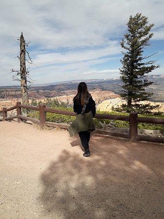 Parque Nacional Bryce Canyon, UT: Parco nazionale di Bryce Canyon, Utah 52