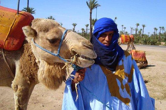 morocco private trips