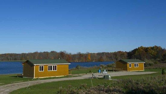 Ionia, MI: 2 cabins to rent
