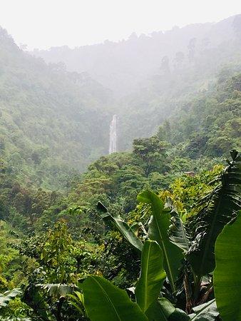 Foto de Tarangire National Park