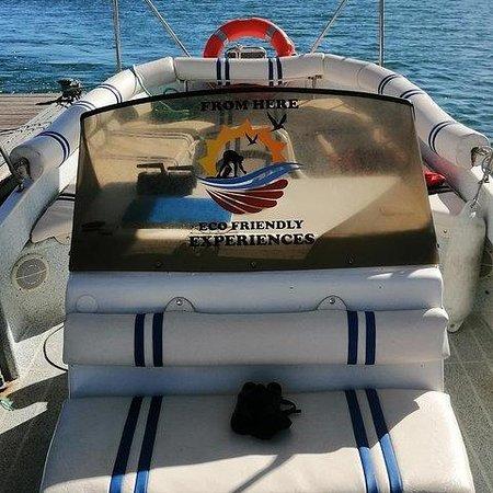 fromherefaro_solarboat