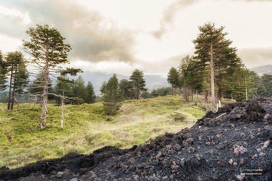 從陶爾米納出發:全日埃特納火山和含晚餐的日落之旅