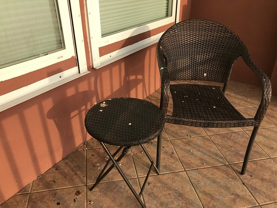 Laguna Vista, TX: The whole patio and chairs needed to be cleaned