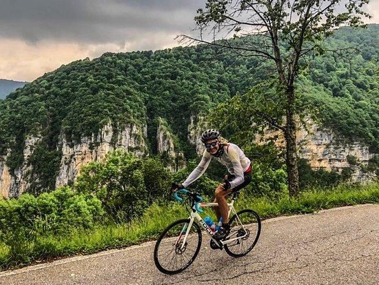 Veloce Bike Rentals Company