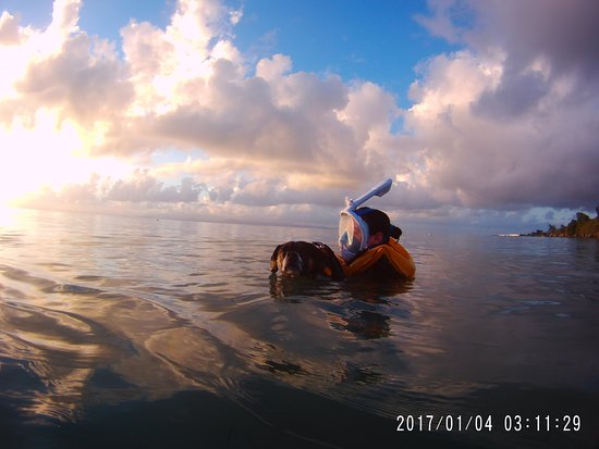 swimming in Playa Blaydin, near pier