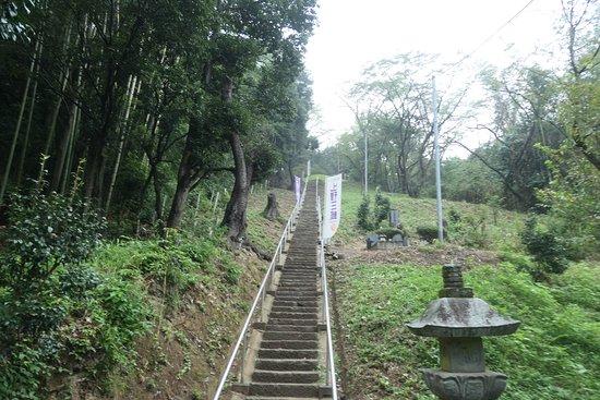 この石碑直前の階段が中々大変でした。