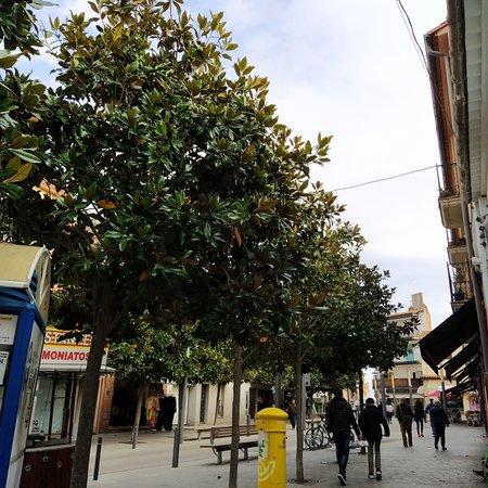 פאלאמוס, ספרד: Plaça Dels arbres